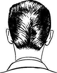 力怎頭髮型