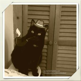 Sherlock Gus the cat
