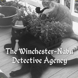 Cats photoshopped as noir detectives