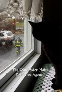 Gus watching fireman