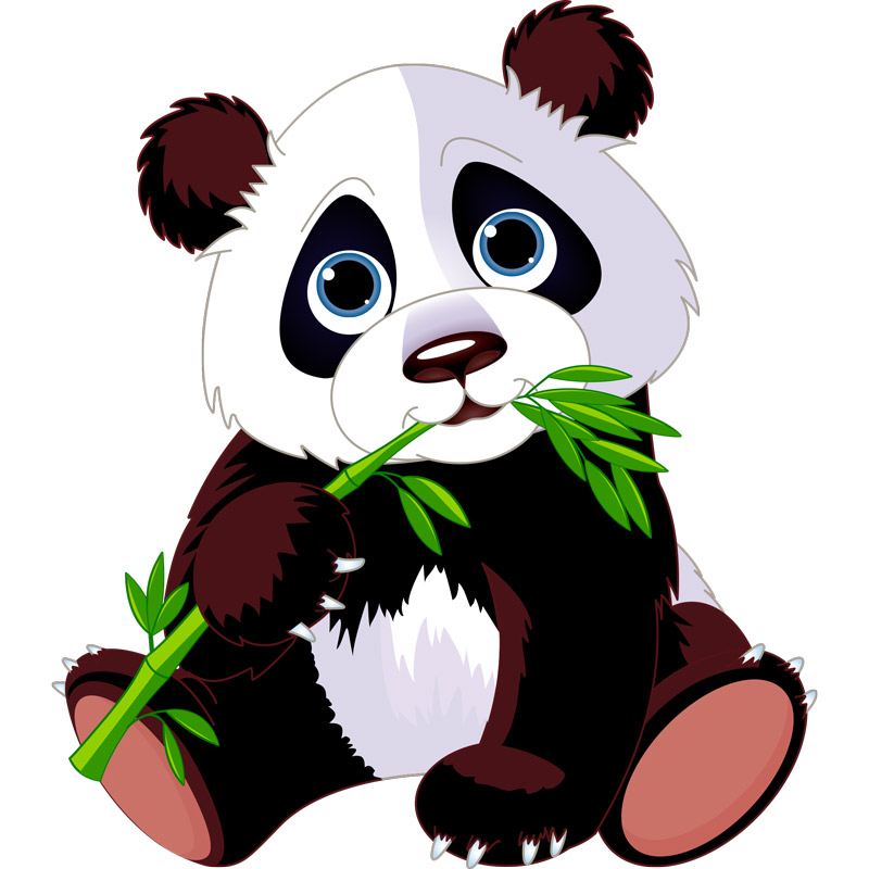 Sticker Animal Panda Et Son Bambou Stickers Animaux