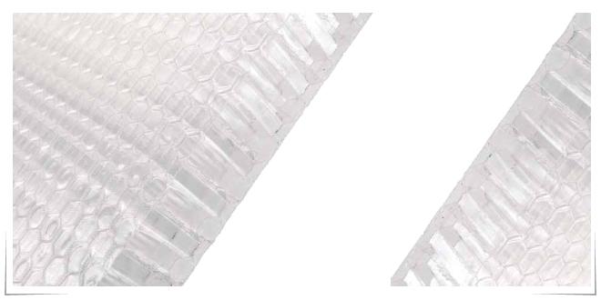 Photo of Panales hechos de plástico