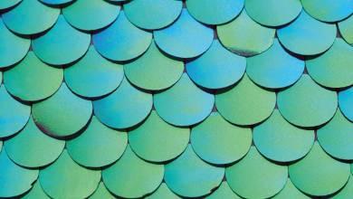 Photo of Descubre las tendencias de color para interiores y exteriores