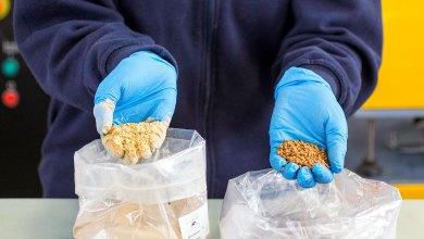 Photo of Aimplas y Olipe desarrollan plástico con los huesos de aceituna