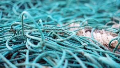 Photo of Enfoque tecnológico para el reciclaje de artes de pesca