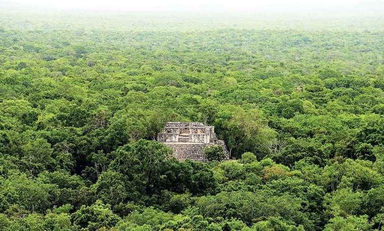 Photo of Arranca en Campeche la construcción del Tren Maya