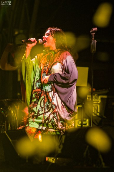 Björk performing live in Auckland, 2008. Shot by New Zealand music photographer Doug Peters.