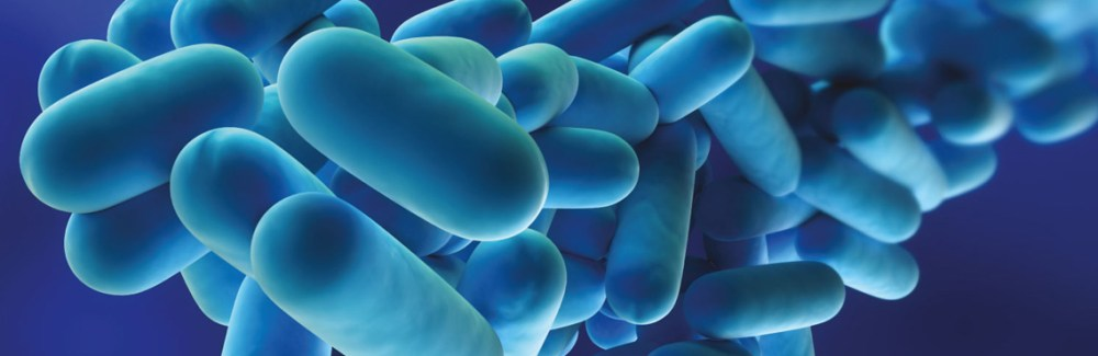 Control de Legionella