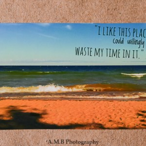 """Nature photo magnet """"Superior View' with a quote from Shakespeare, """"I like this place and could willingly waste my time in it."""""""