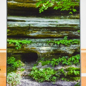 """A 9"""" x 12"""" Artisan Canvas of my image What's Inside?. Image captured in the Fall of 2017 and canvas created in the Fall of 2018."""
