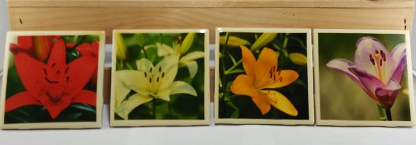 Set of 4 High Gloss Lilies Coasters all captured in my home gardens.