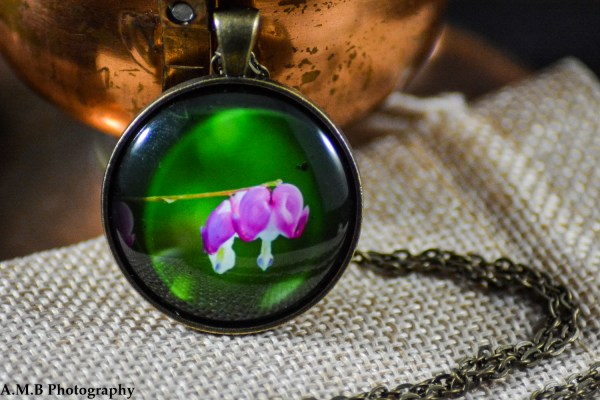 A pink Bleeding Heart set in an Antique Bronze bezel with a brass chain. Image captured in the Spring of 2018 and pendant created in the Winter of 2019.