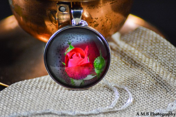 A red Rose bud set in an Antique Silver bezel with a shiny silver chain. Image captured in the Spring of 2018 and pendant created in the Winter of 2019.