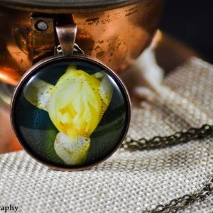 A Yellow Iris flower set in an Antique Copper bezel with a brass chain. Image captured in the Spring of 2017, and pendant created in the Winter of 2019.