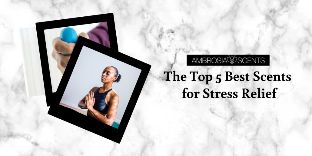 The Top 5 Best Scents for Stress Relief