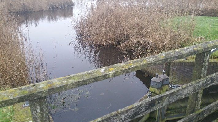 Wandelen over het Groot Frieslandpad bij Polderhoofdkanaal Nij Beets