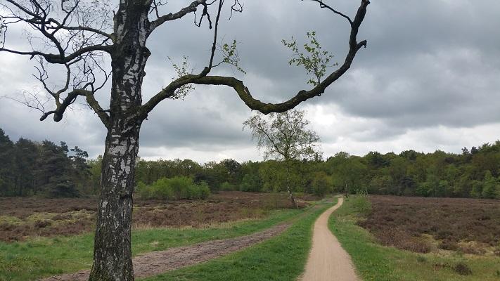 Warnsborn op wandeling over Roots Natuurpad van Schaarsbergen naar Doorwerth