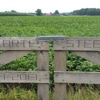 NS-Wandeling - Hart van het Groene Woud - Door Nationaal Landschap in het mooie Brabant