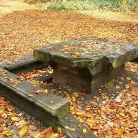 NS-wandeling - Stenen Tafel - Wandelen door landschapsparken in groene Arnhem