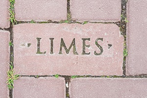 Wandelen over langeafstandspad het Romeinse Limespad