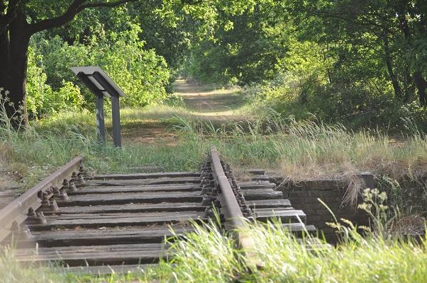 Wandelen over het Airbornepad op Duits Lijntje van Boxtel naar Gennep
