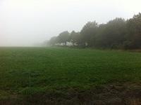 Landschap bij Wittelte op wandeling over Drenthepad van Diever naar Wittelte
