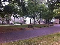 Diever dorpsweide op wandeling over Drenthepad van Diever naar Wittelte