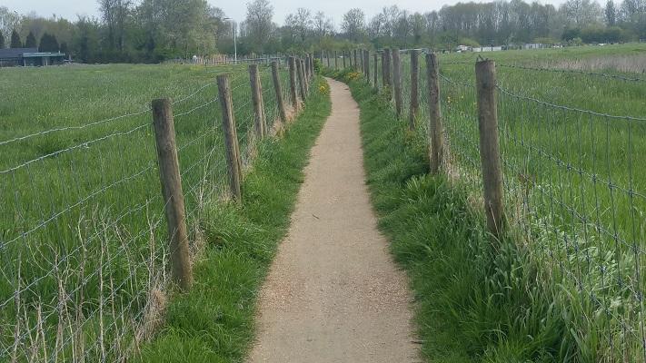 Elfstedenpad naar Schalsum tijdens wandeling over Elfstedenpad van Franeker naar Sint-Annaparochie