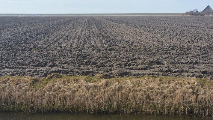 Akkerland bij Kimswerd op wandeling over het Elfstedenpad van Witmarsum naar Kimswerd
