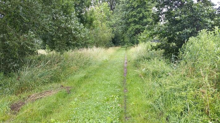 Wandelen over het Groot Frieslandpad langs Oude Verlaat in Muntendam