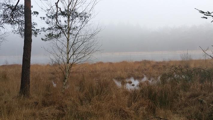 Wandelen over het Groot Frieslandpad langs De Witte Meer in Olterterp