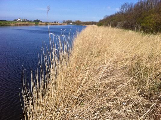 Wandelen over het Groot Frieslandpad langs het Noordhollandsch Kanaal