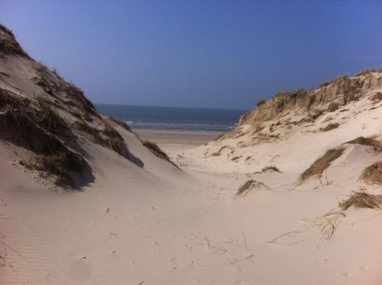 Wandelen over het Groot Frieslandpad door de duinen aan de Noordzee