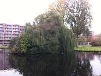 Carnisse Rotterdam tijdens een wandeling over het Erasmuspad