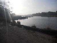 Koolhaar op een wandeling over het Maarten van Rossumpad van Steenwijk naar Rogat