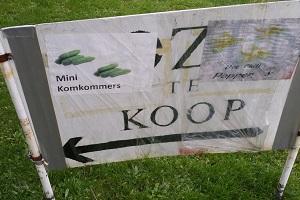 Minikomkommers te koop tijdens wandeling over Maas-Niederrheinpad