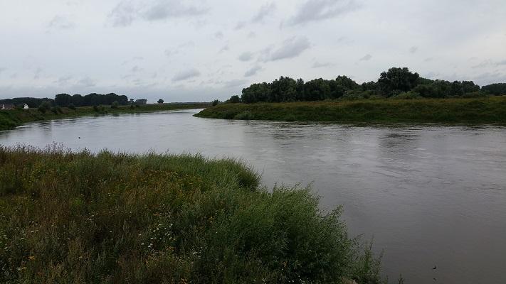 Grensmaas op een wandeling over het Maaspad van Berg aan de Maas naar Maaseik