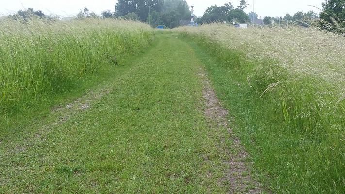 Pad langs Amertak tijdens een wandeling over het Maaspad van Drimmelen naar Waspik