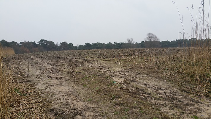 Wandelen over het Marikenpad bij oude vuilstort in Rosmalen