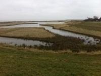 Vlatrop op een wandeling over het Nederlands Kustpad van Anna Paulowna naar Den Oever