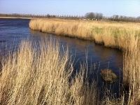 Oude Veer op een wandeling over het Nederlands Kustpad van Callantsoog naar Anna Paulowna