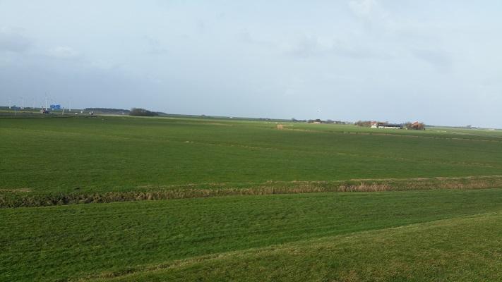 Pingjum tijdens een wandeling over het Nederlands Kustpad van Makkum naar Harlingen