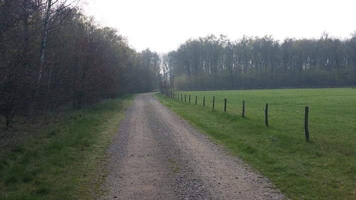 Wandelen over het Peelpad bij Castenray