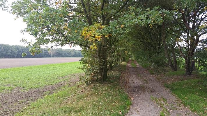 Wandelen over het Peelpad richting Heusden