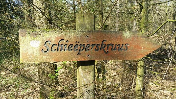 Wandelen over het Peelpad bij Schieëperskruus in Ballonzuilbossen