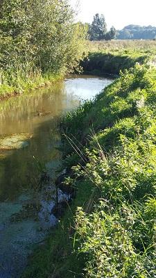 Wandelen over het Peerkepad bij riviertje de Keersop