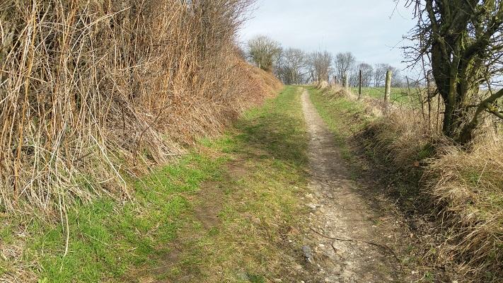 Wandelen over het Peerkepad in de voetsporen van Peerke Donders op een holle weg
