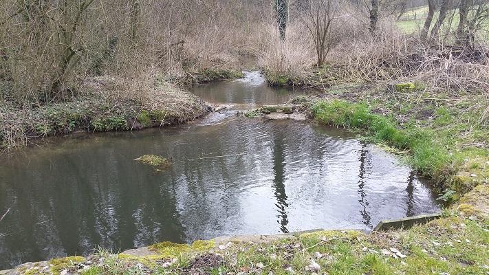 Wandelen over het Peerkepad in de voetsporen van Peerke Donders langs de Geulle