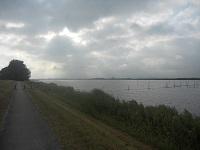 Nijkerkernauw op een wandeling over het Pionierspad van Lelystad naar Trekkersveld