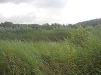 Schokland op een wandeling over het Pionierspad van Lelystad naar Trekkersveld